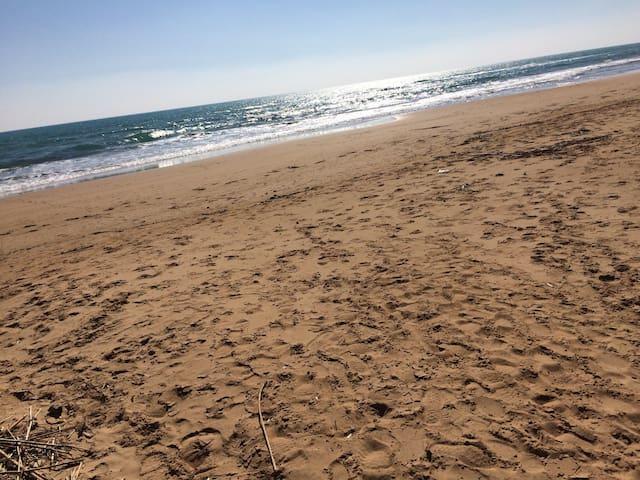 Casa vacanza a due passi dal mare - Triscina - House
