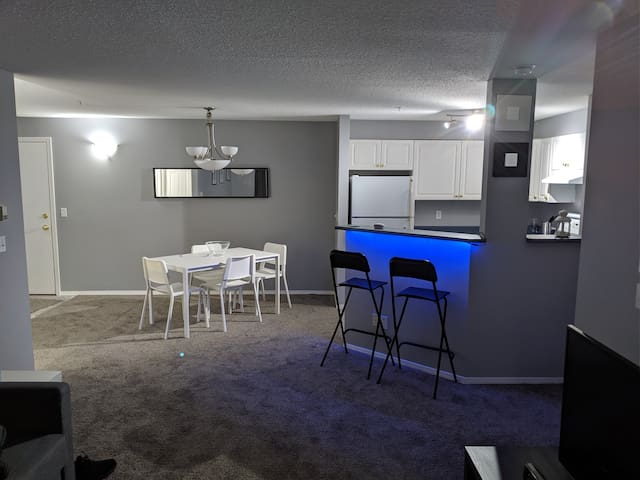 Modern 1 bedroom 1 bathroom condo