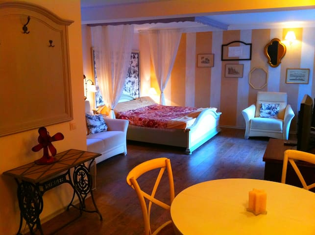 Amazing  Studio in Predeal (Bucegi resort)