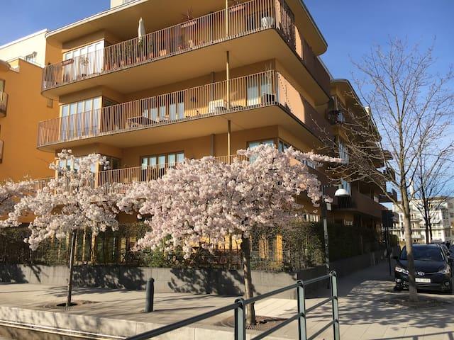 Sturdio at Hammarby Sjöstad, Stockholm - Estocolmo - Apartamento