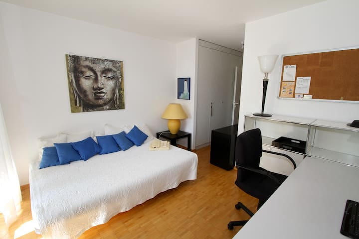 CHARMING, LIGHT ROOM close Geneva - Nyon