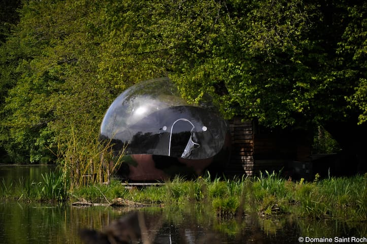bulle sur l'eau - Couvin - Wyspa