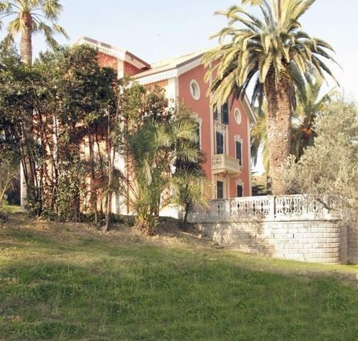 Villachiara Silvi Marina: LAURIER