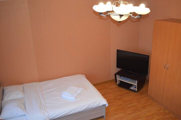 Просторная квартира с размещением до 4 гостей