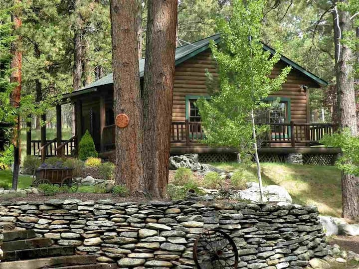 Rustic Luxury Cabin, with all the amenities.