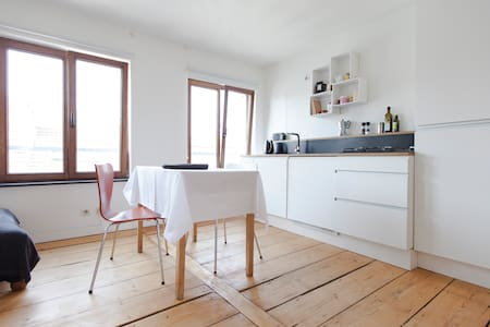 Luminous renovated appt + terrace - Ixelles