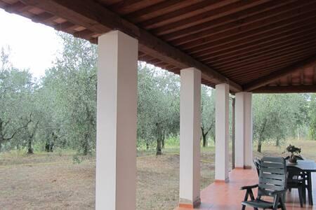 Adriana Apt. in Malmantile Tuscany - Malmantile - Apartamento
