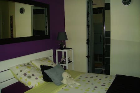 Spacious room for 2  with private b - Pollestres - Bed & Breakfast