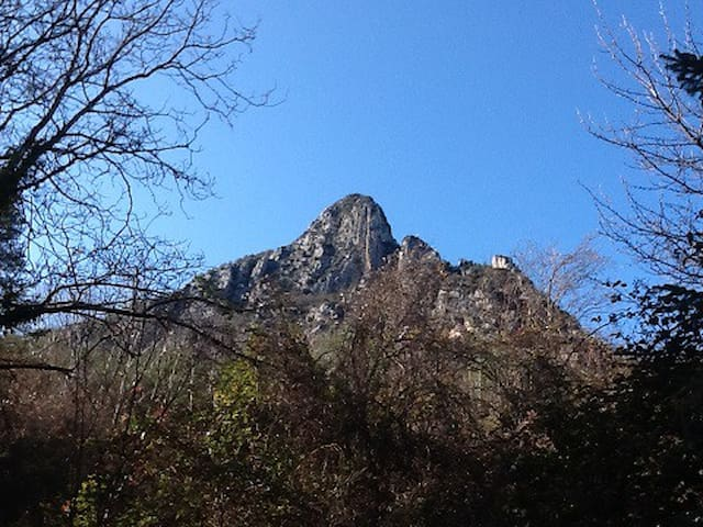 Vascogne sur Esteron