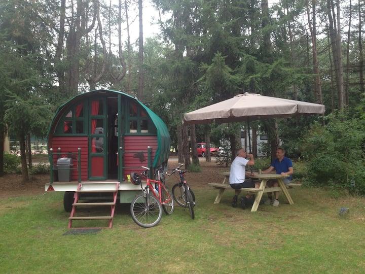 Leuke pipowagen bosrijke camping