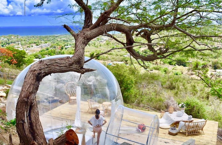 Bubble tent at Elnido Vieques