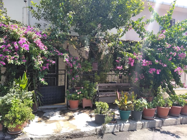 Flowering Detached House in Izmir