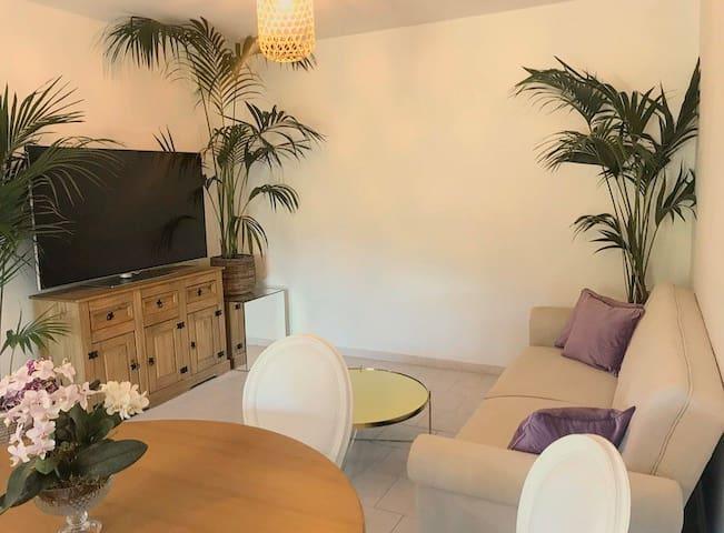 Coin salon avec canapé -lit et grand télé
