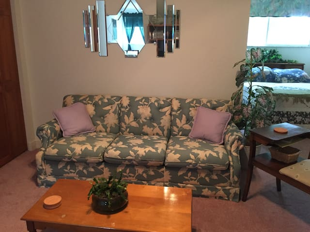 Living area/Sofa bed