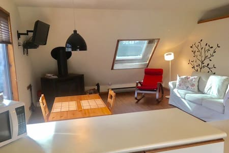 Beautiful Cozy 1 Bedroom Apartment - Cold Spring