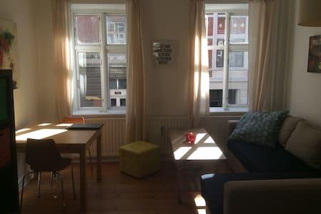 Charmerende ældre 2 værelses i Aarhus C - Aarhus - Apartamento