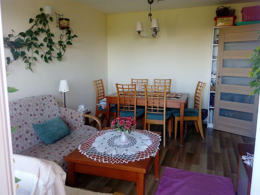 Pokój z rozkładaną wersalką do spania/ Sitting room with a sofa that turns into a bed
