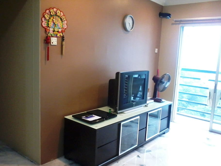 with TV and DVD player