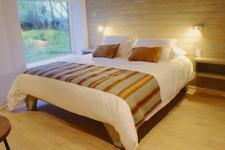 King size room   ( 6 rooms )