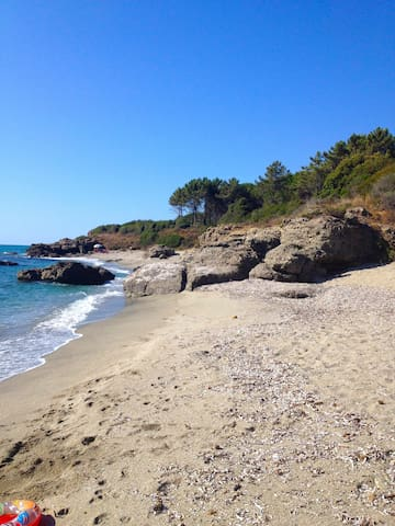 In Corsica bush, lovely beach apart - Linguizzetta - Pis