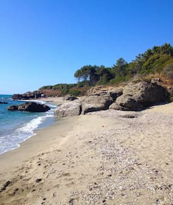 In Corsica bush, lovely beach apart - Linguizzetta - Wohnung