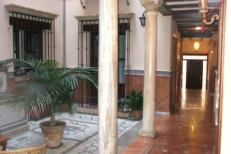 Economic,center,historic 16 century - Granada