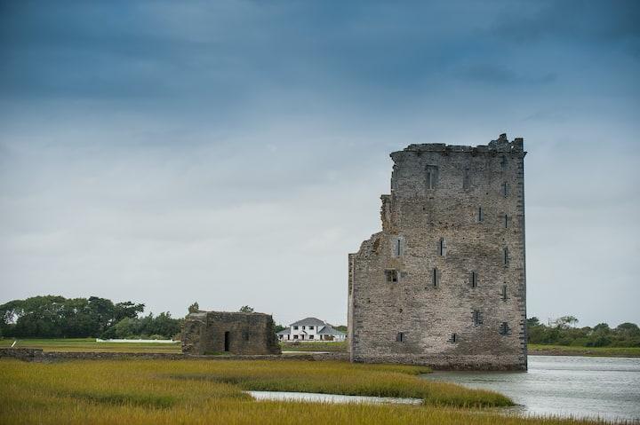 Castle View House on Island - Carrigafoyle Castle