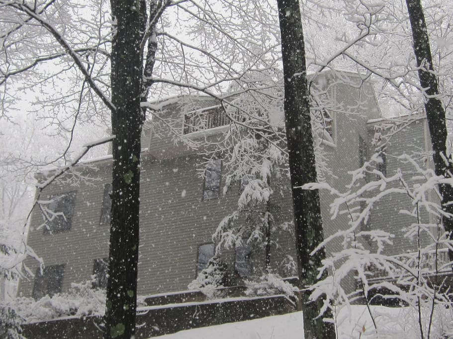 Scene of the entire home from outside in Winter time. Sceneries are different every season.
