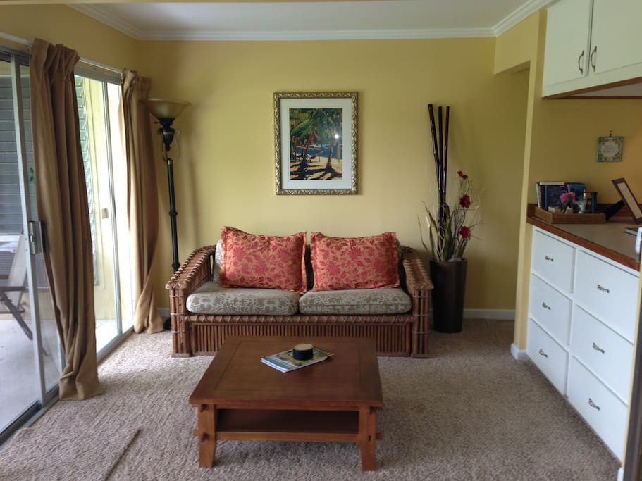 Den area.  This sleeper sofa offers sleeping for 2. A pull out door offers additional privacy