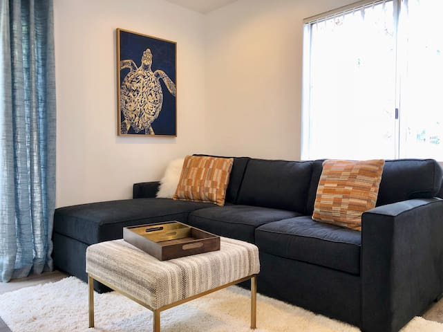 Queen pullout sofa
