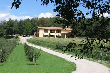 Holiday complex surrounded - Piazze - Apartment