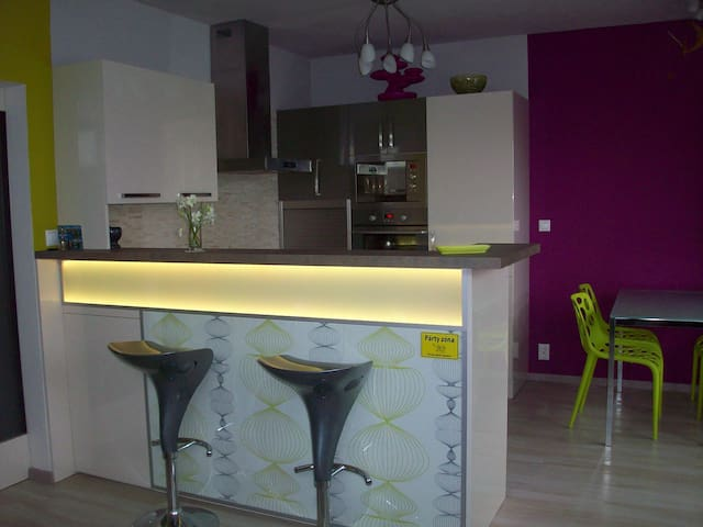 Whole modern flat with garden  - Brno - Leilighet