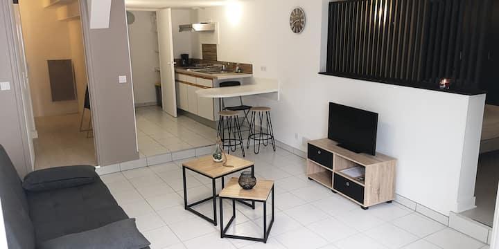 Appartement avec terrasse proche des volcans
