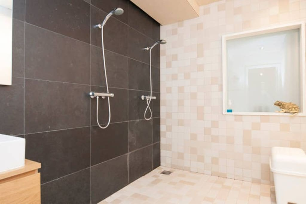 The defining future of my apartment!!!! A double shower