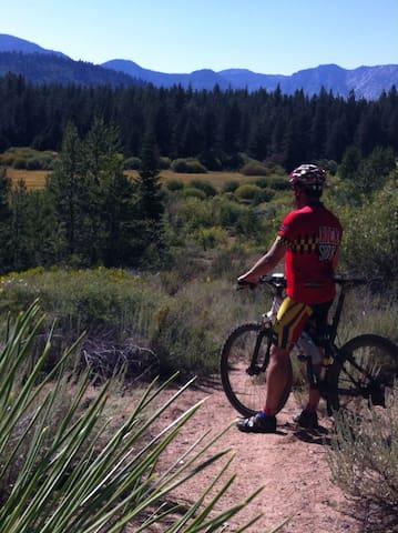 Perfect town for mountain  biking.