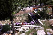 Flower beds and retaining walls.