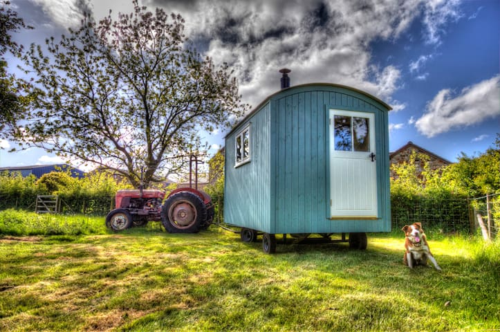 Glamping Under Stars Shepherd's Hut -