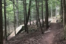 Elm Ridge Trails (pedal from house)
