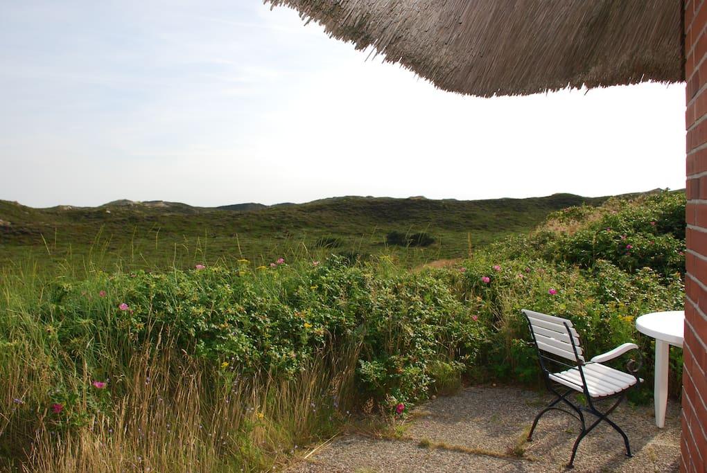 Blick von der Terrasse: Dünen- und Heidelandschaft so weit das Auge reicht!