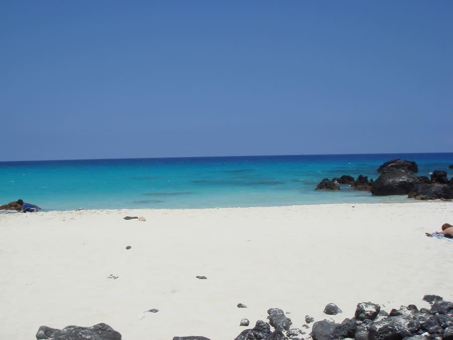 My favourite snorkel spot near Kona, rated top 10 !!