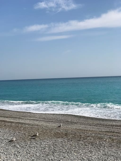 Море 200 метров