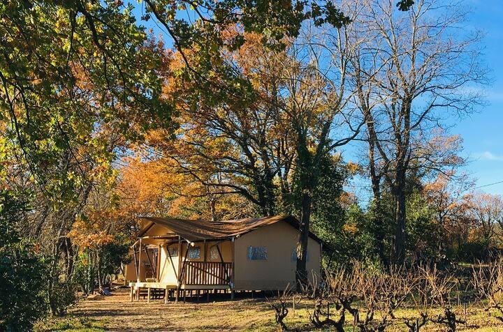 Safari Lodge sur pilotis au cœur de la nature