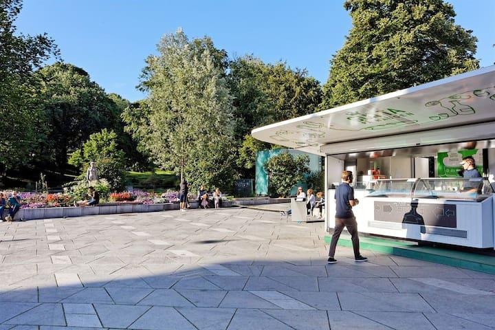 Best ice cream in town? St.Hanshaugen park, summertime
