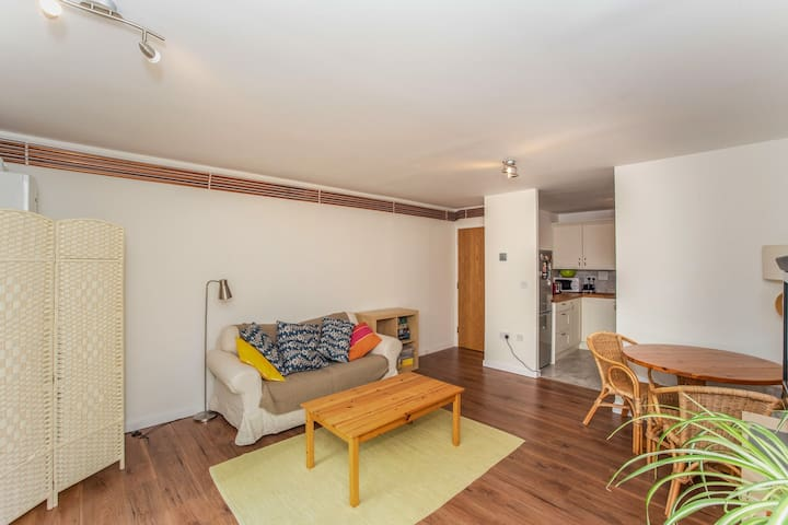 Long let - bright one-bed flat next to the Thames