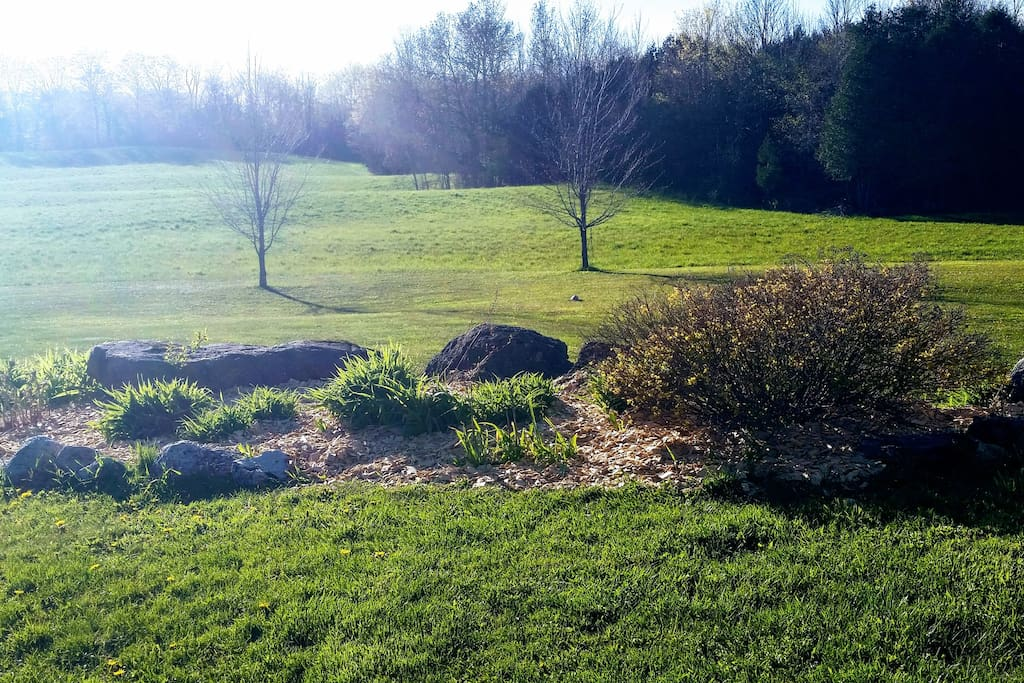 Beautiful views surrounding you here at Grey Ridge Farms