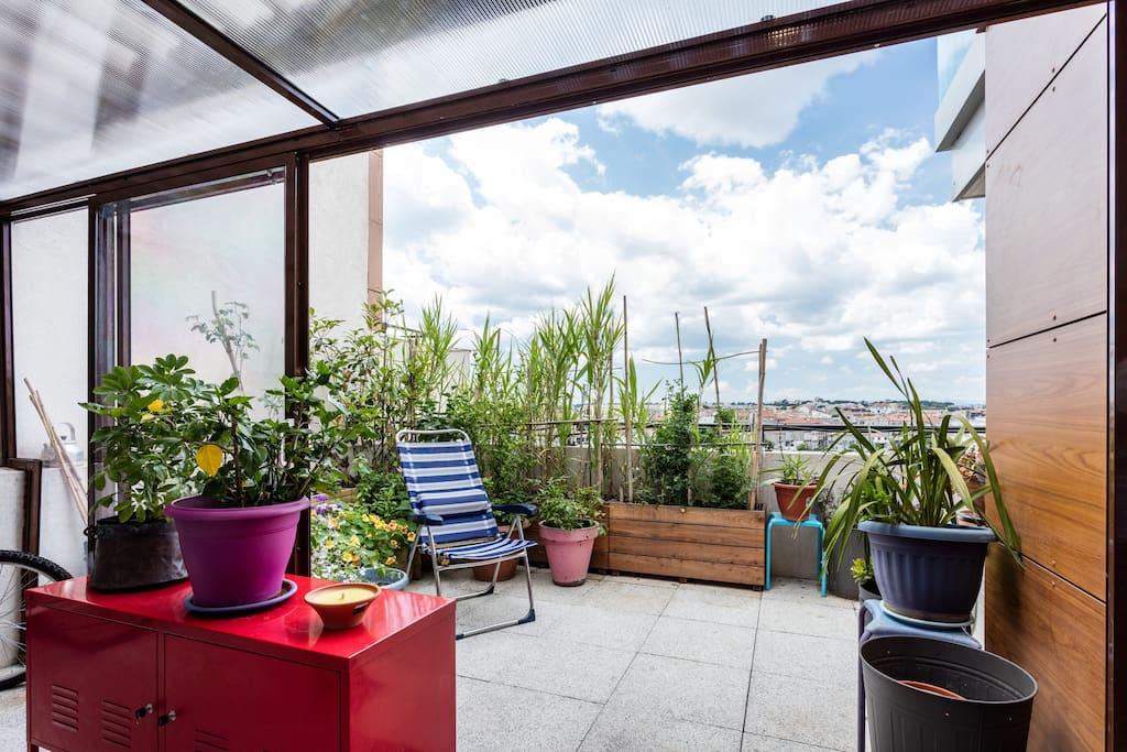 Une terrasse abritée sous une véranda et un espace fleuri avec fauteuils pour se relaxer. Une grande table pour prendre les repas devant le coucher de soleil !