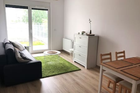 Modern and comfortable apartment to rent
