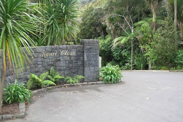 Contemporary home in bush setting