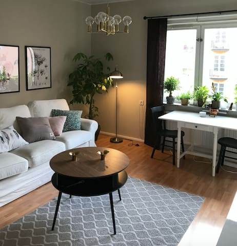 Cozy apartment in Stockholm with lots of sunshine