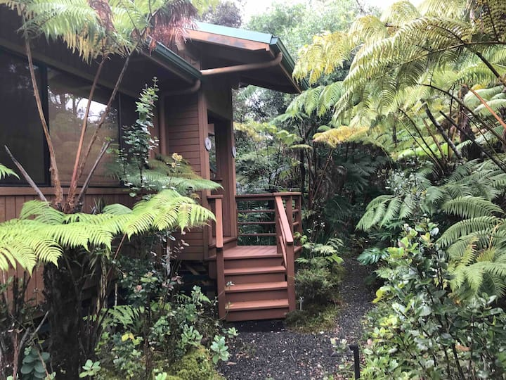 EMERALD RAINFOREST RETREAT---Your Path To Nature!!